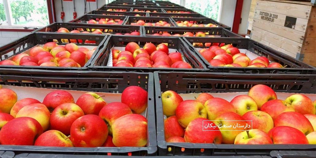 کنترل دما و رطوبت سردخانه نگهداری میوه و سبزیجات
