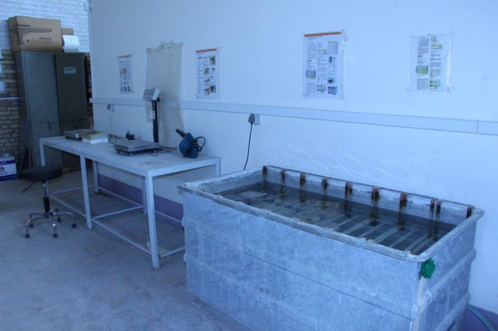 دیتالاگر ثبت دمای استخر نمونه ویژه آزمایشگاه بتن