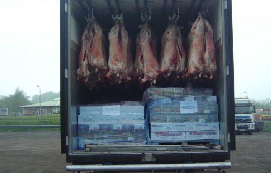 دیتالاگر دما در حمل و نقل گوشت